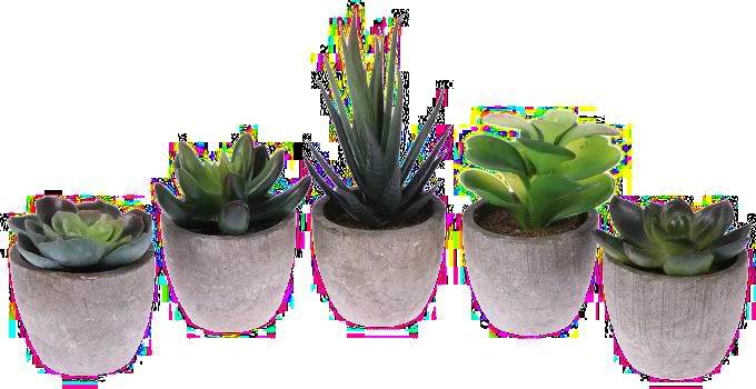 cadeau pour une personne âgée - plantes artificielles