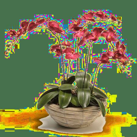Des jolies fleurs artificielles cadeau pour grand m for Jolies fleurs artificielles