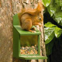 Écureuils eekhoornpakket vivara