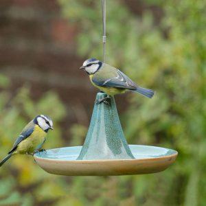 cadeau jardin - abreuvoir oiseaux