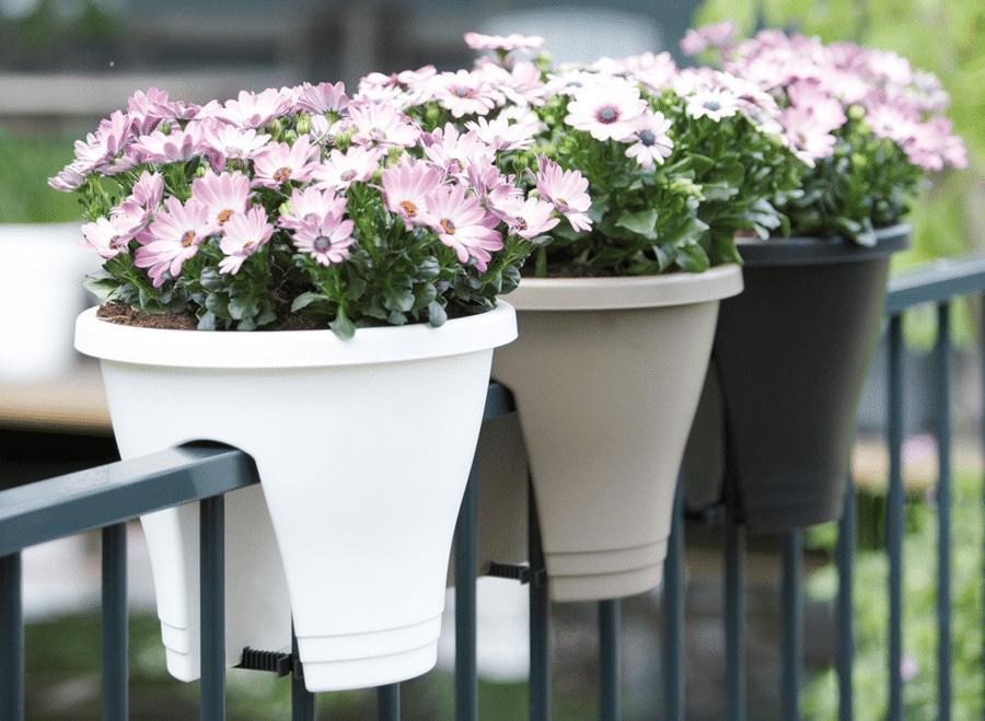 jardinière pour égayer le balcon