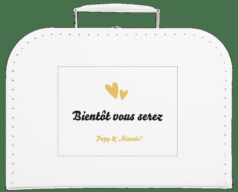 cadeau pour annoncer votre grossesse à vos parents - valise personnalisable
