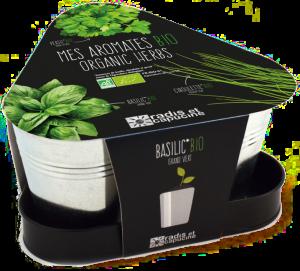 kit prêt-à-pousser basilic-ciboulette-persil - cadeau anniversaire 75 ans